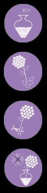 verzorgingspagina-iconen-snijbloem