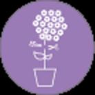 Kamerplant-01-verzorgingspagina